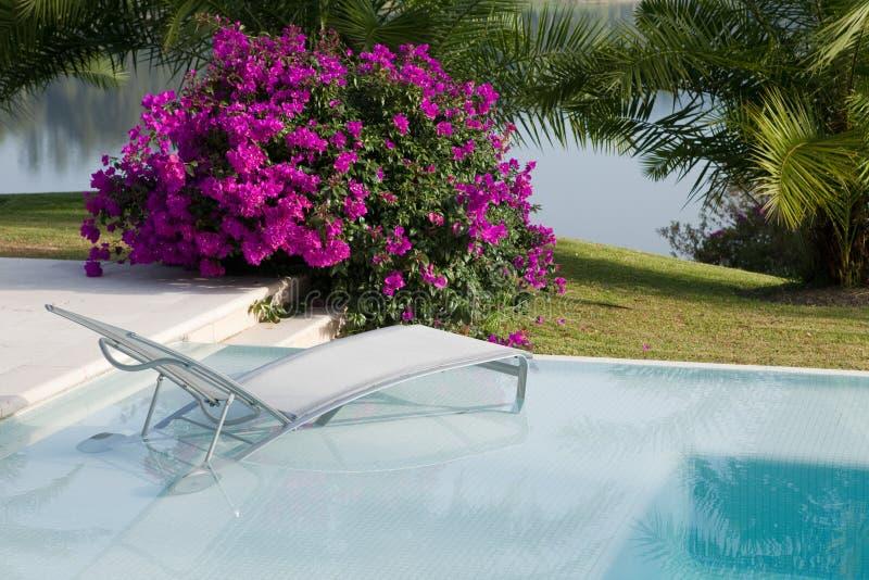 Poolside-Stuhl lizenzfreie stockbilder