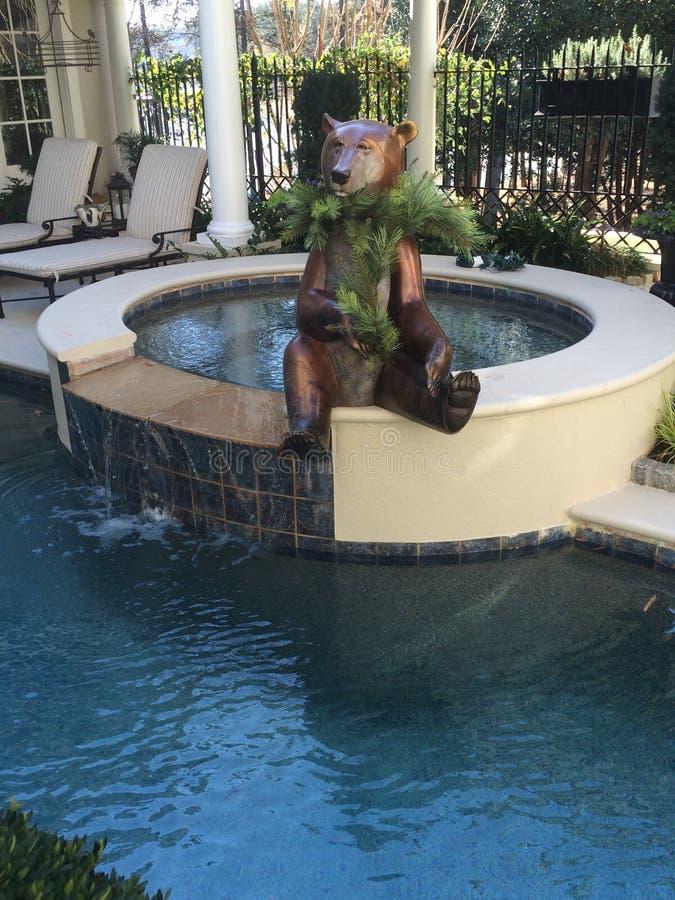 Poolsidebjörn royaltyfri bild