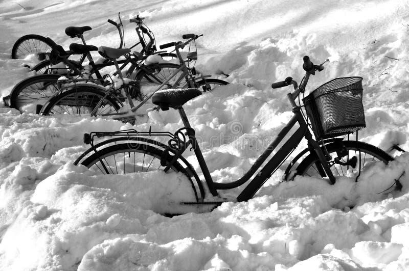 Poor Bikes Stock Image Image Of Bike Snow Winter Left 20459405