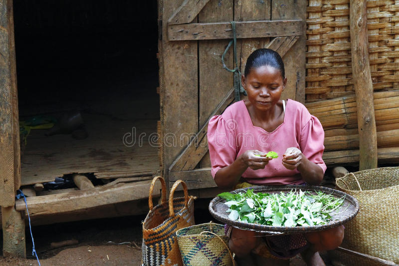 Poor Malagasy woman preparing food in front of cabin. Madagascar stock photos