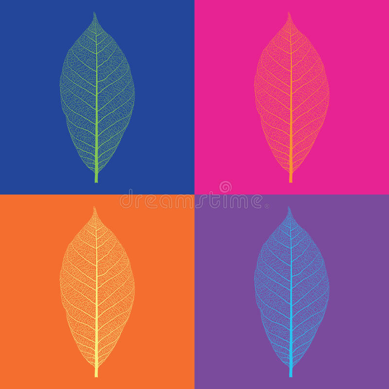 Pop-art style vector leaf skeletons. On varicolored backgrounds vector illustration