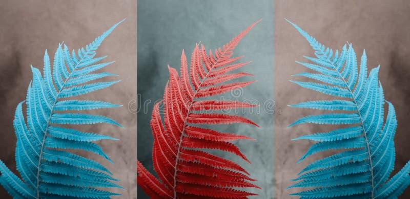 Pop-art triptych poster with big fern leaf stock photos