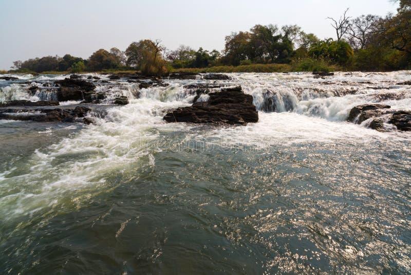 Pop Spada w Okavango rzece obrazy stock