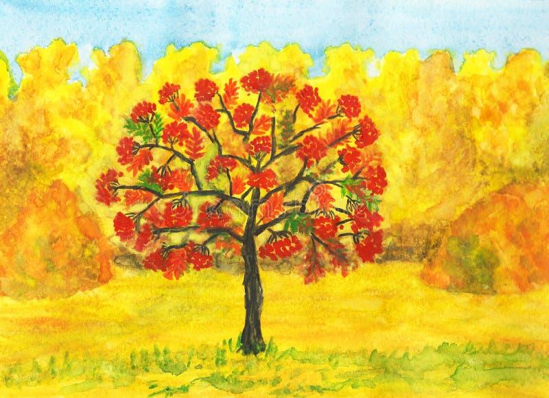 Popiółu drzewo w jesieni royalty ilustracja