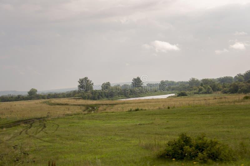 Popielate chmury w wczesnym jesieni niebie nad zieleni polami, drzewami, lasami i ogromnymi górami, zamykają Mnóstwo łąkowi ziele obraz stock