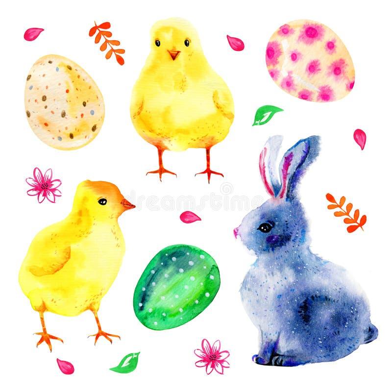 Popielaty Easter królik, żółci dzieci chikens i kwiaty, Ręka rysujący akwareli ilustraci set ilustracji