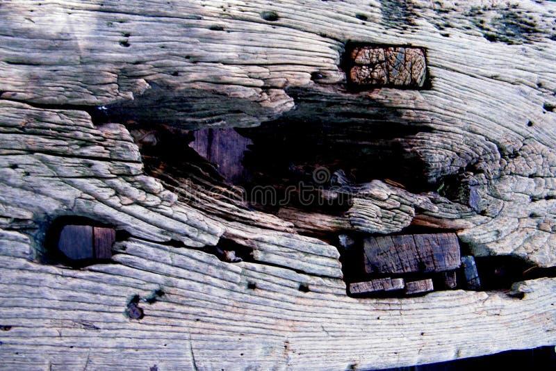 Popielaty stary drewniany tekstury tło fotografia royalty free