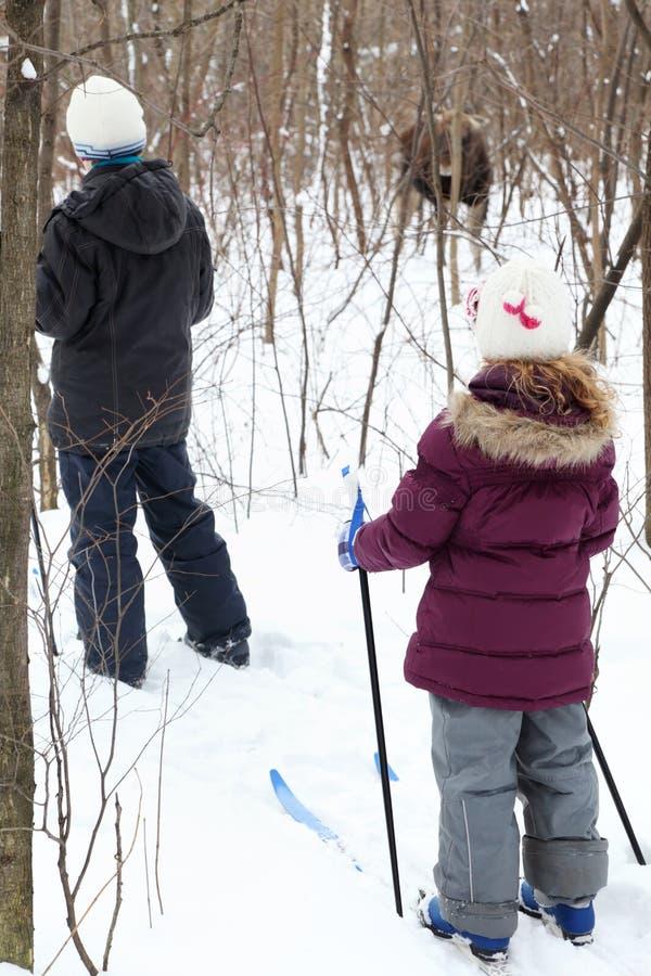 Popiera dziecka narciarstwo i patrzeć młodego łosia fotografia royalty free