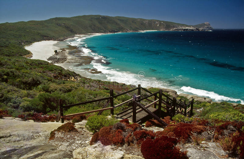 popołudniowy Albany Australia plażowy sceny western obrazy royalty free