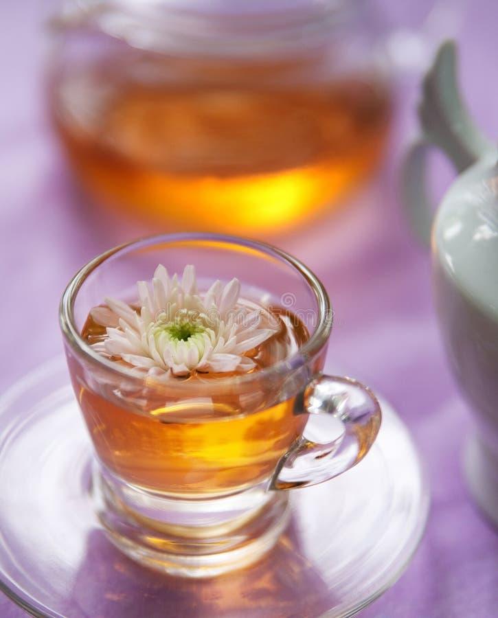 Popo?udniowa herbata zdjęcie stock