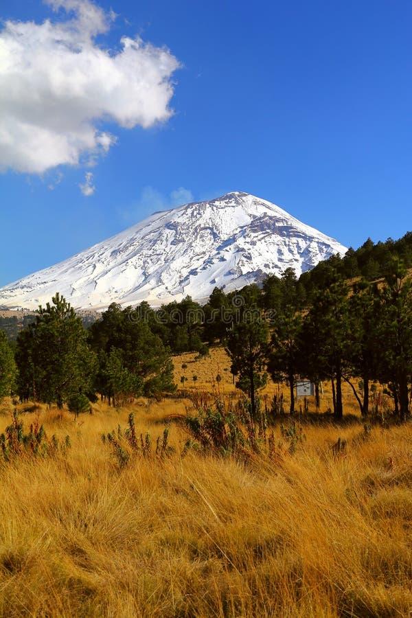 Popocatepetl nationaal park VI stock foto