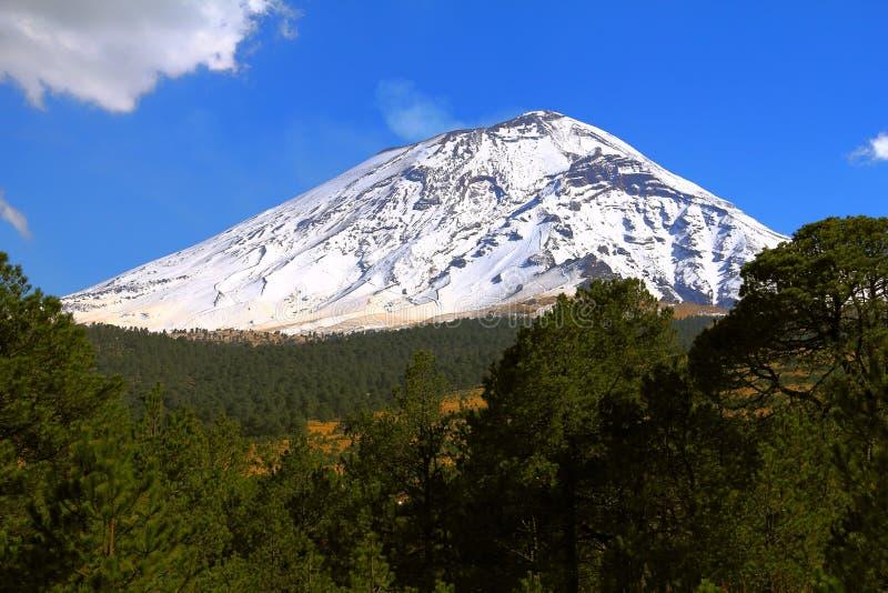 Popocatepetl nationaal park VIII stock fotografie