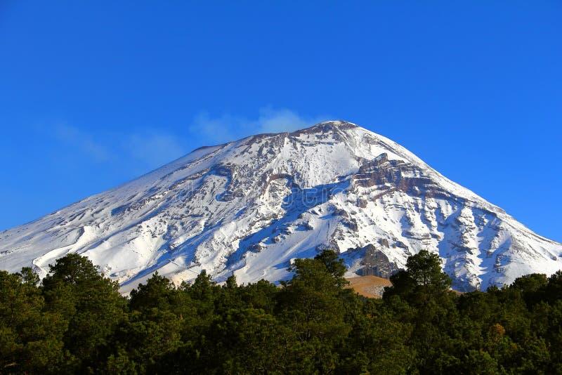 Popocatepetl nationalpark II arkivfoton