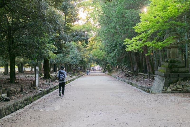 Popolo giapponese nel parco di Nara, Giappone immagini stock