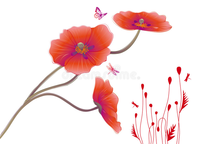 Download Poppies stock vector. Image of floral, backdrop, butterfly - 9336919
