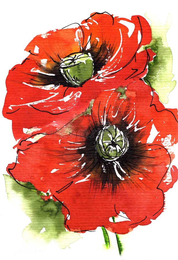 Poppies on green royalty free illustration