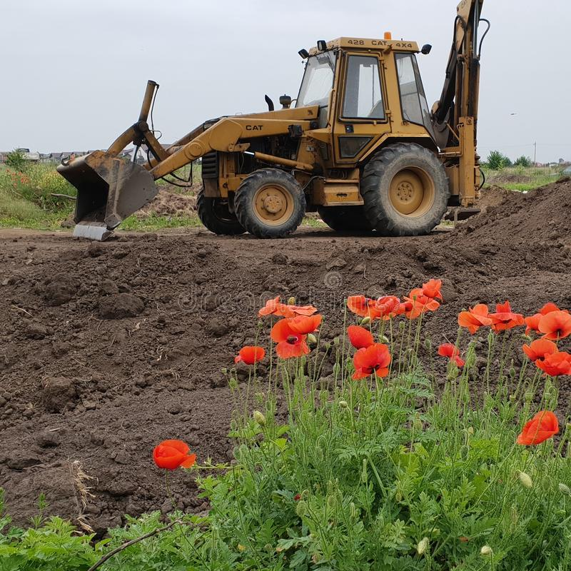 Poppies with tractor stock photo