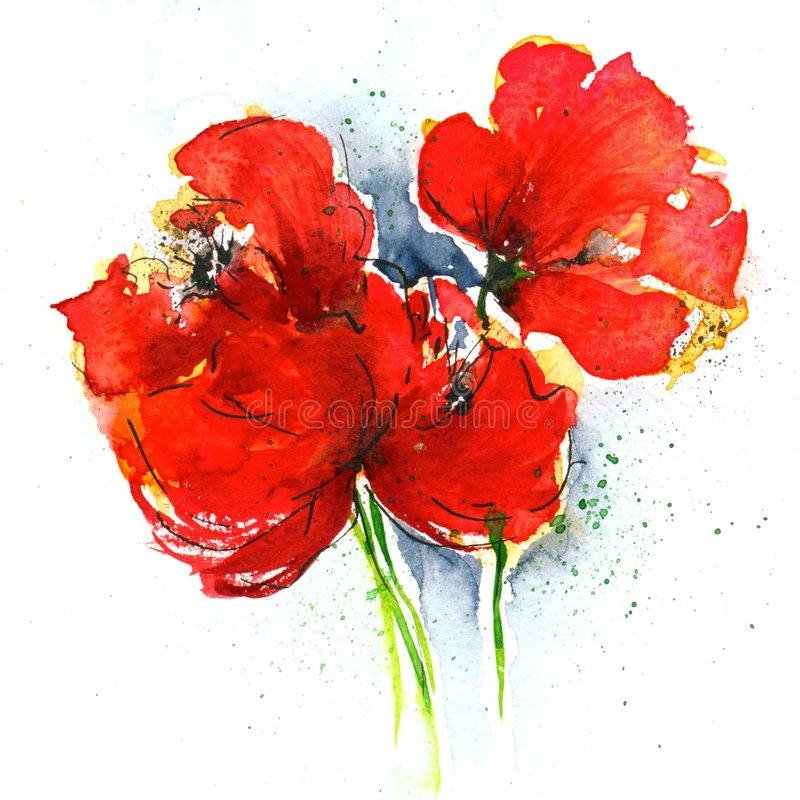 Poppies on white. Floral painted poppy illustration on white background. Ink and watercolor painting. Art is created and painted by the photographer stock illustration