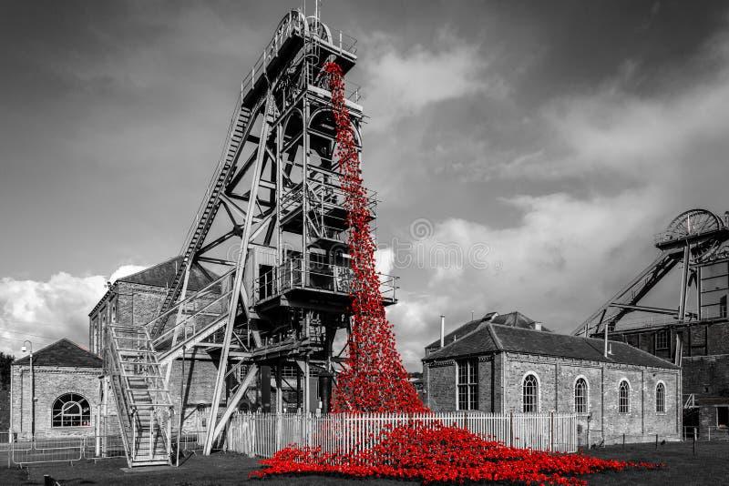 Poppies at Woodhorn colliery. Ashington, Northumberland, England stock image