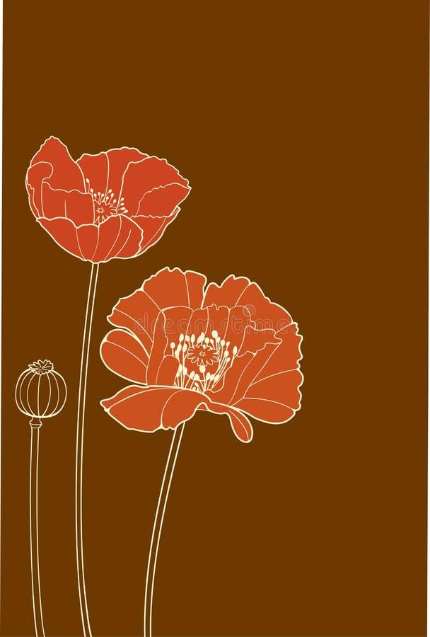 Poppy vector illustration