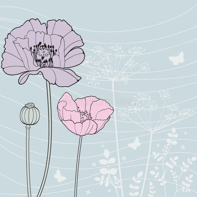 Poppy. Vector background with a poppy royalty free illustration