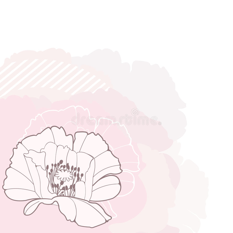Poppy 2. Vector design element; poppy flower stock illustration