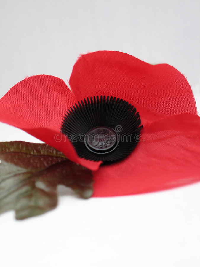 Download Poppy stock photo. Image of veteran, donate, world, died - 324652