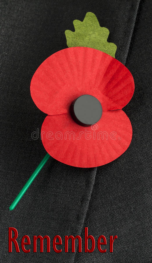 Poppy Appeal For Remembrance / Poppy Day. Royalty Free Stock Image