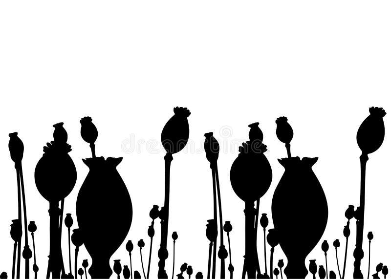 Poppy capsules border. Isolated on white background stock illustration