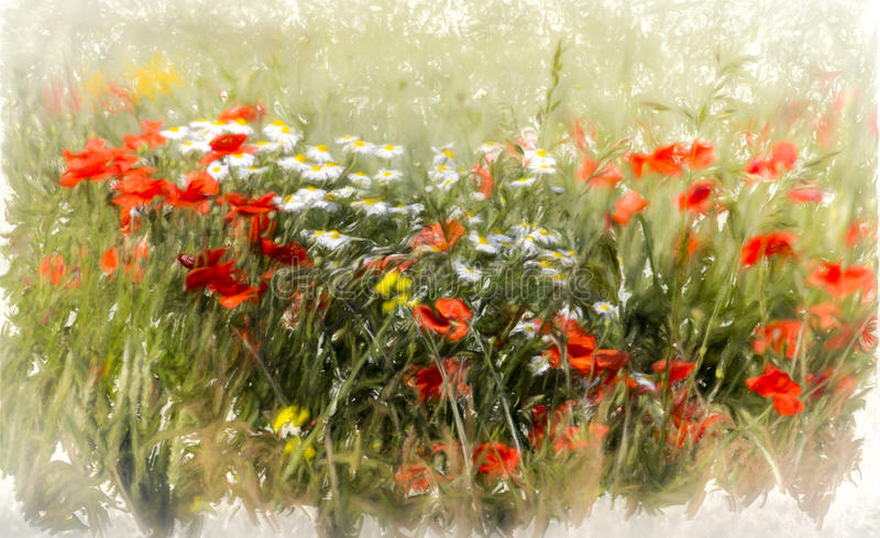 Poppy field. Abstract image of wild flowers in a field in summer, watercolour look stock illustration