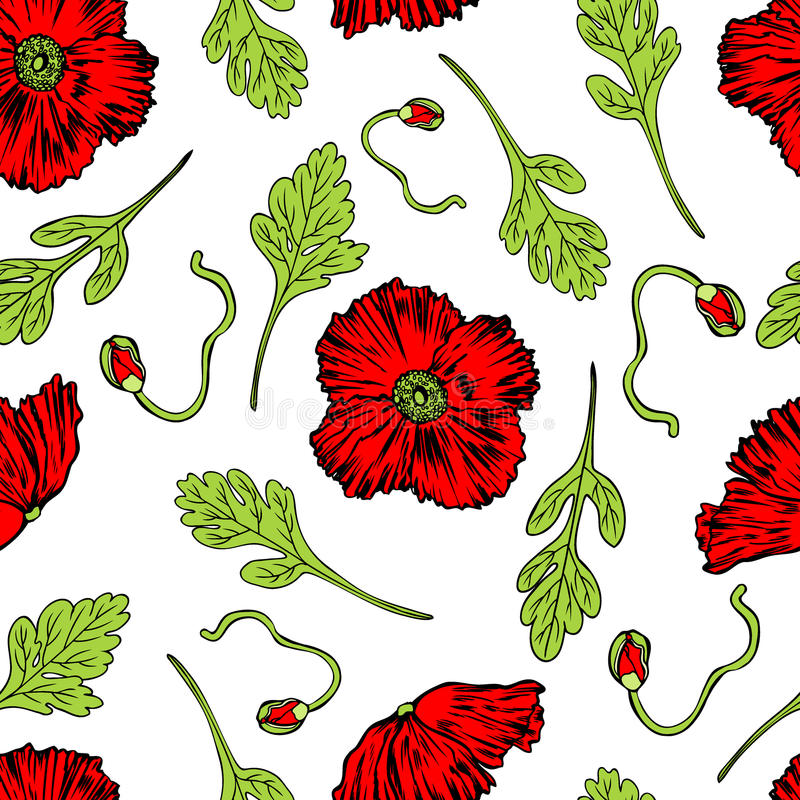 Poppy flower, bud, leaf vector engraving sketch hand drawn. Isolated on white, seamless pattern, vintage romantic style for greeting card, package cosmetic stock illustration
