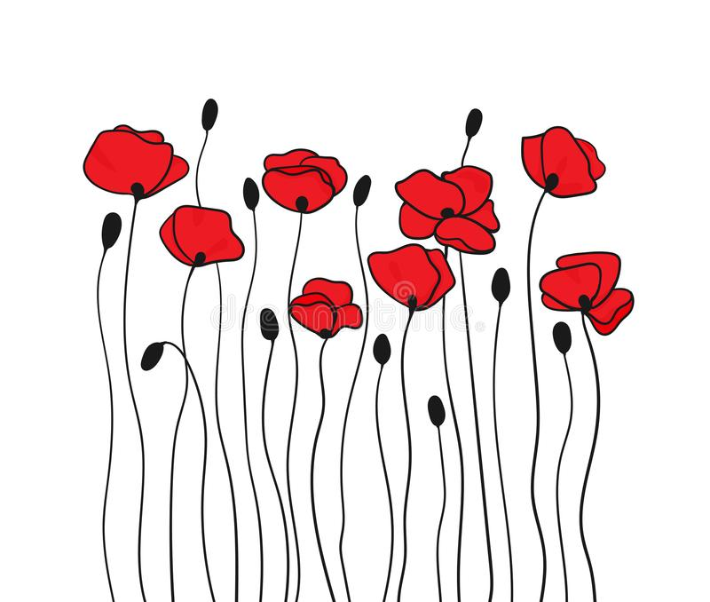 Poppy flowers and buds. Floral pattern in black and red. Vector vector illustration