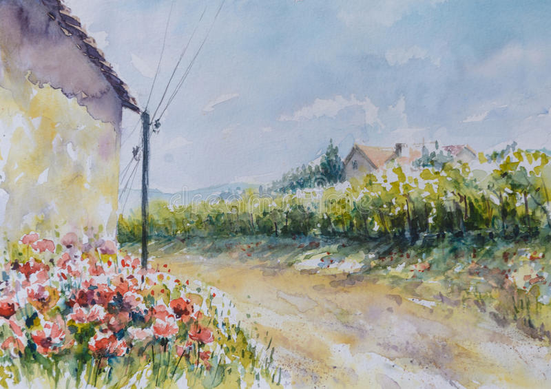 Poppy. Flowers close to the country road.Picture created with watercolors royalty free illustration