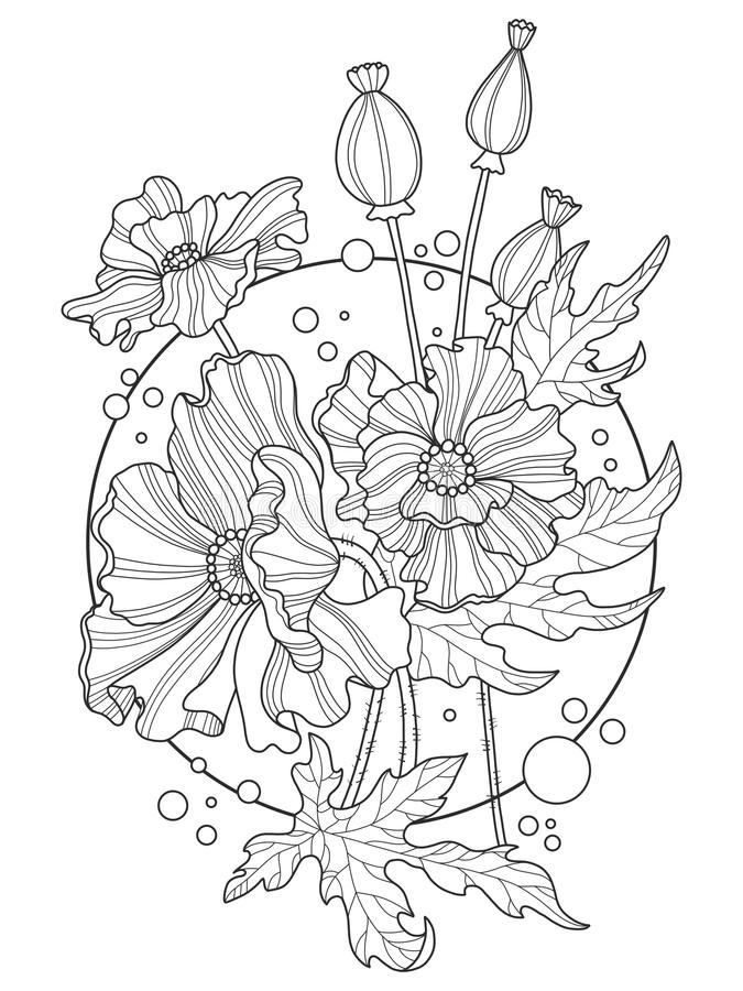 Download Poppy Flowers Coloring Book Vector Illustration Stock
