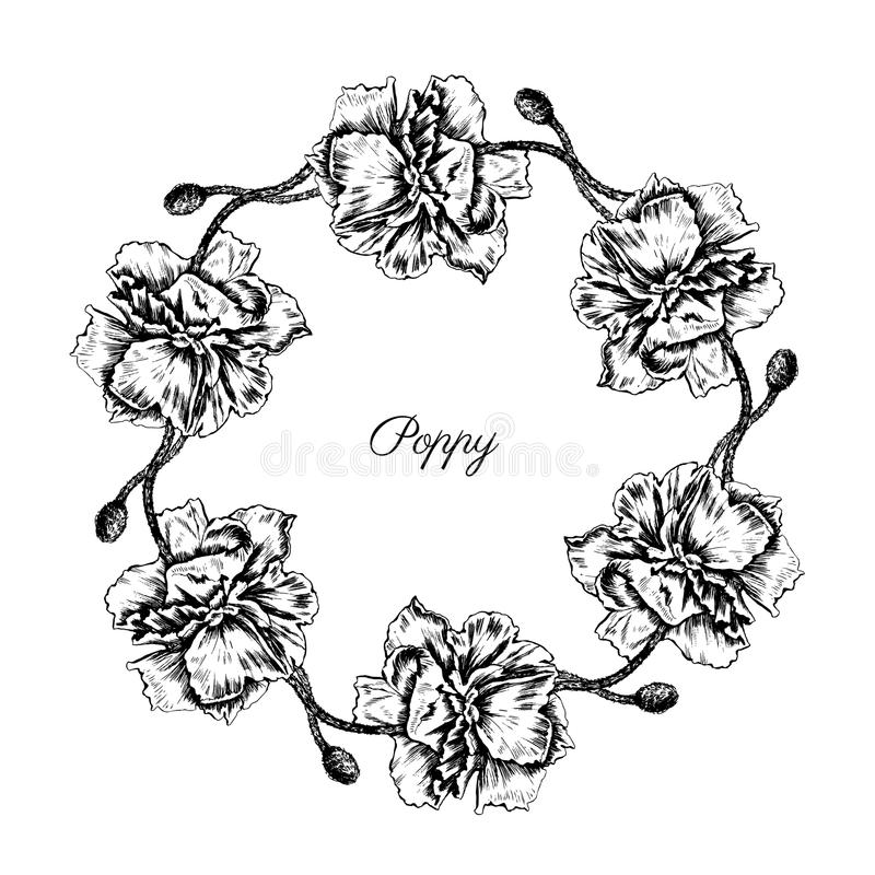 Poppy flowers, floral wreath isolated on a white background, Round frame hand drawn vector sketch herbal engraved royalty free illustration
