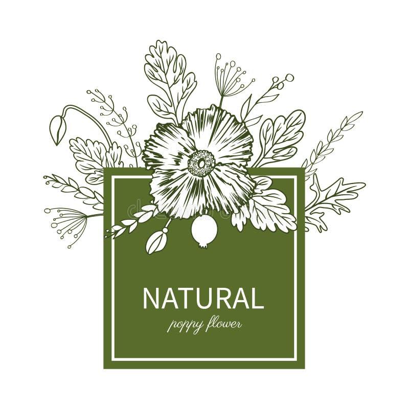 Poppy flowers, leaves floral frame isolated on white stock illustration