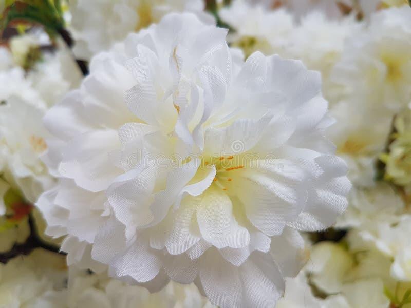 White plastic poppy flowers stock image image of bouquet home download white plastic poppy flowers stock image image of bouquet home 114044959 mightylinksfo