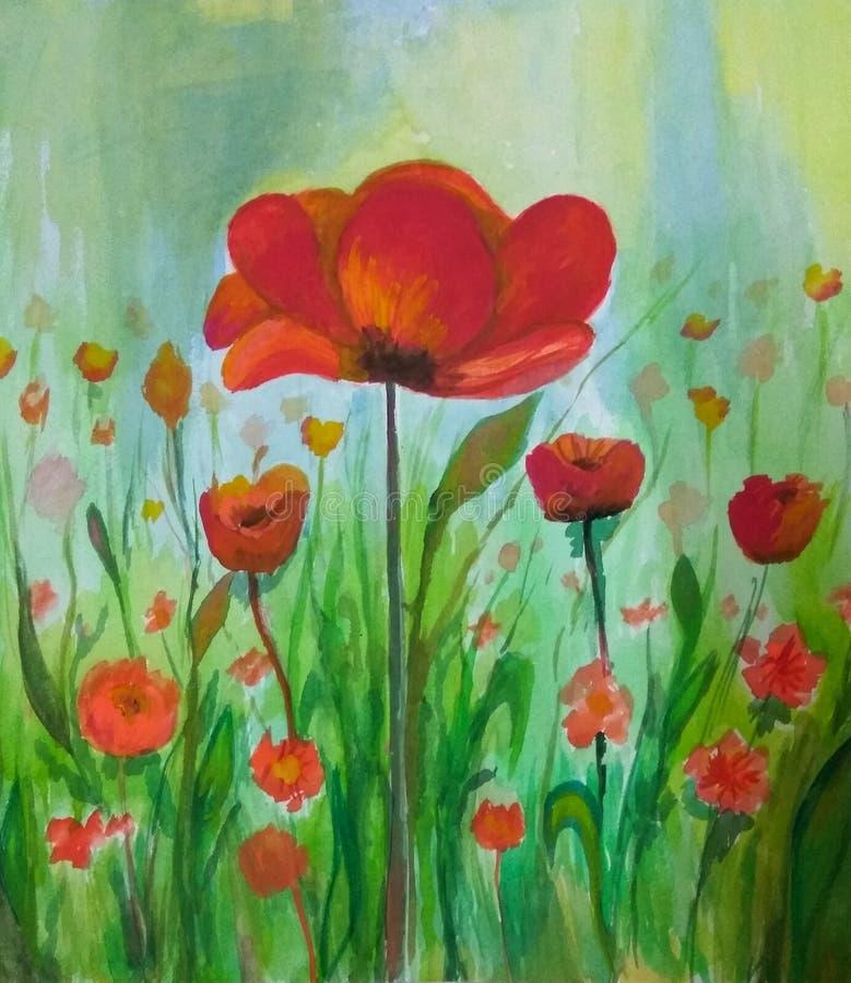 Poppy flowers watercolor vector illustration
