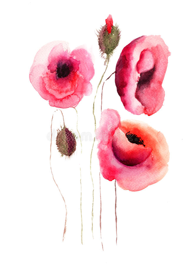 Download Poppy Flowers, Watercolor Illustration Stock Illustration - Image: 27155707