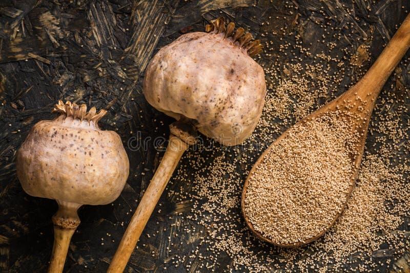 Poppy Heads et Poppy Seeds sèches dans une cuillère en bois photo stock