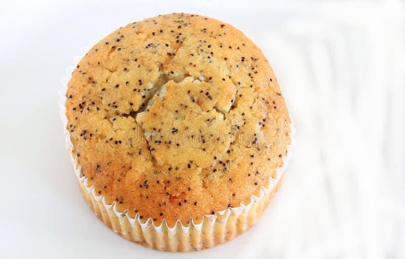 Poppy Seed Muffin stock fotografie