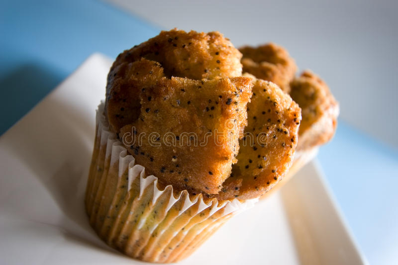 Poppy Seed muffin on white plate, blue background stock image