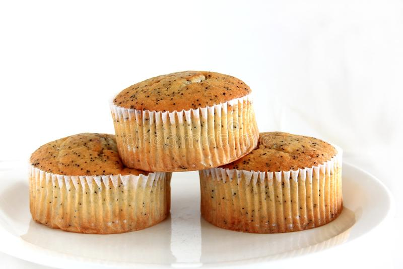 Poppy Seed Muffins royalty-vrije stock afbeelding