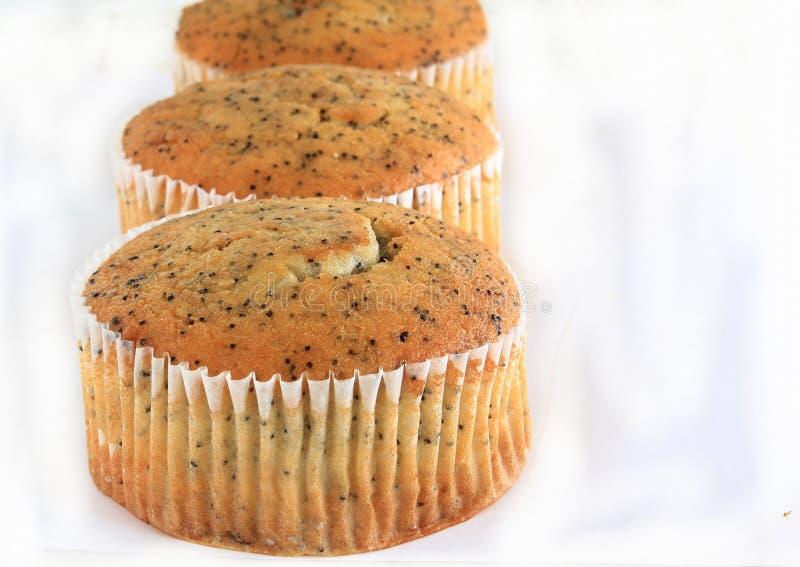Poppy Seed Muffins royalty-vrije stock foto's