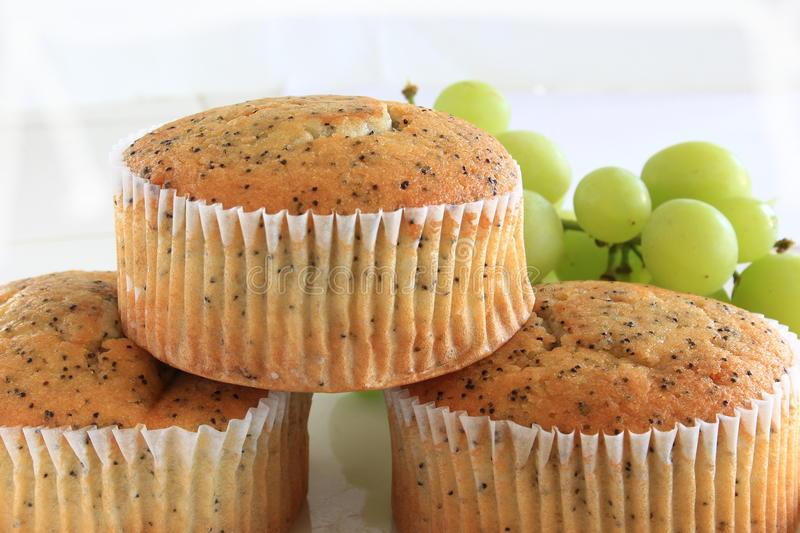 Poppy Seed Muffins stock afbeelding