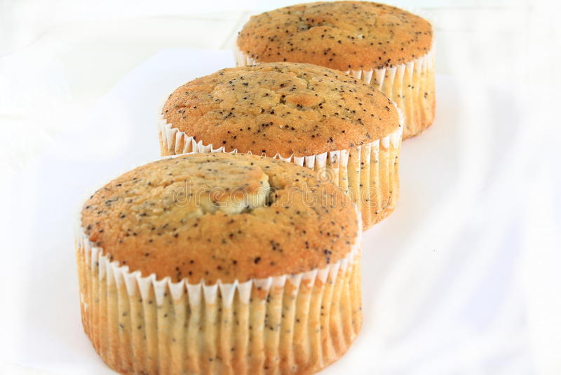 Poppy Seed Muffins stock afbeeldingen