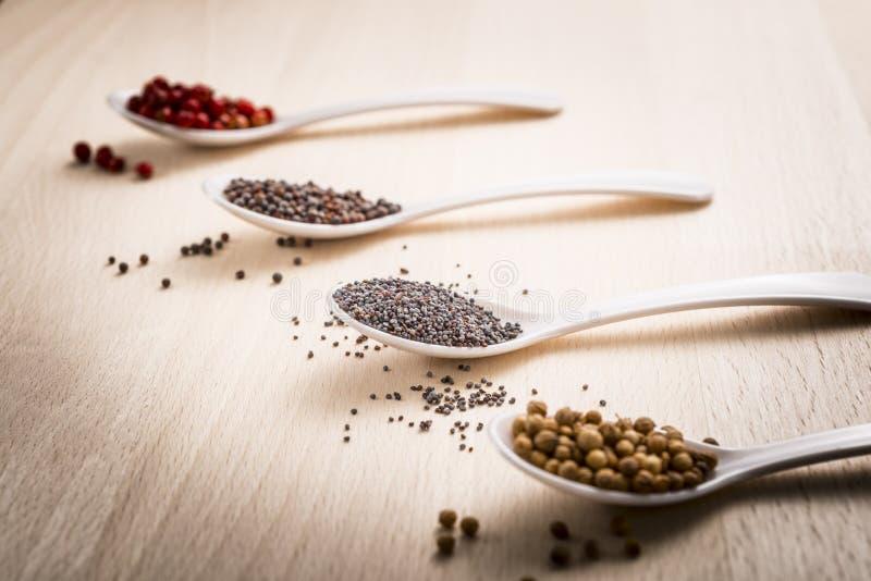 Poppy seeds royalty free stock photos