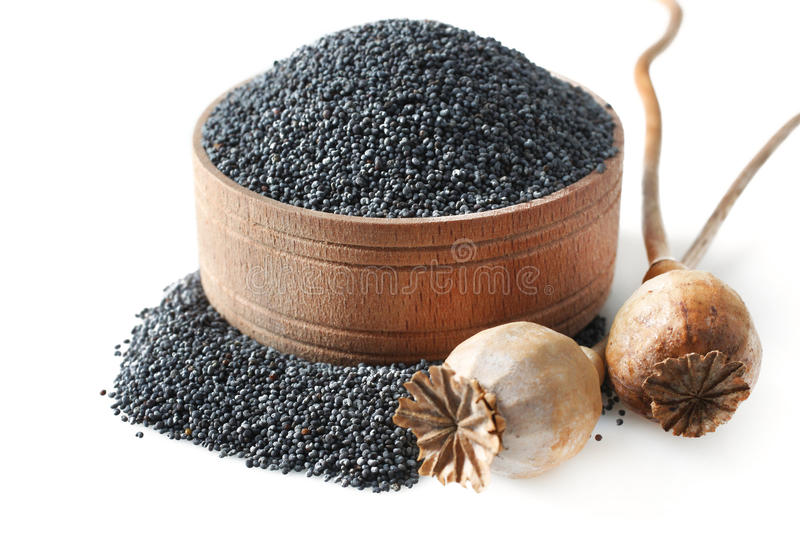 Poppy seeds royalty free stock images