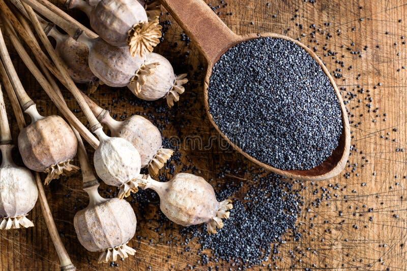Poppy seeds. In wooden spoon stock photos