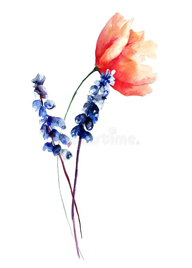 Poppy with wild flowers stock illustration